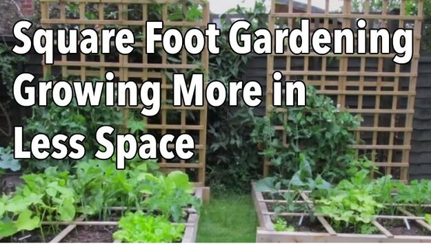 Square foot gardening video