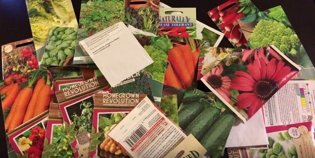 Seed catalog shopping