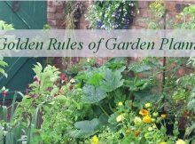 5 rules of garden planning