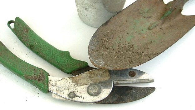 How to maintain your garden tools sustainable gardening news for Best gardening tools 2016