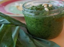 Garlic greens pesto