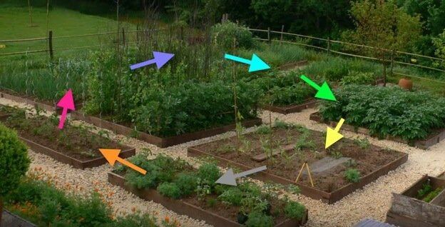 Crop rotation plan