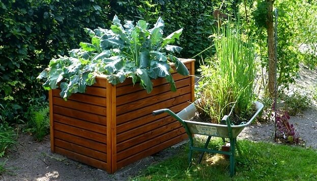 Growing a sustainable vegetable garden