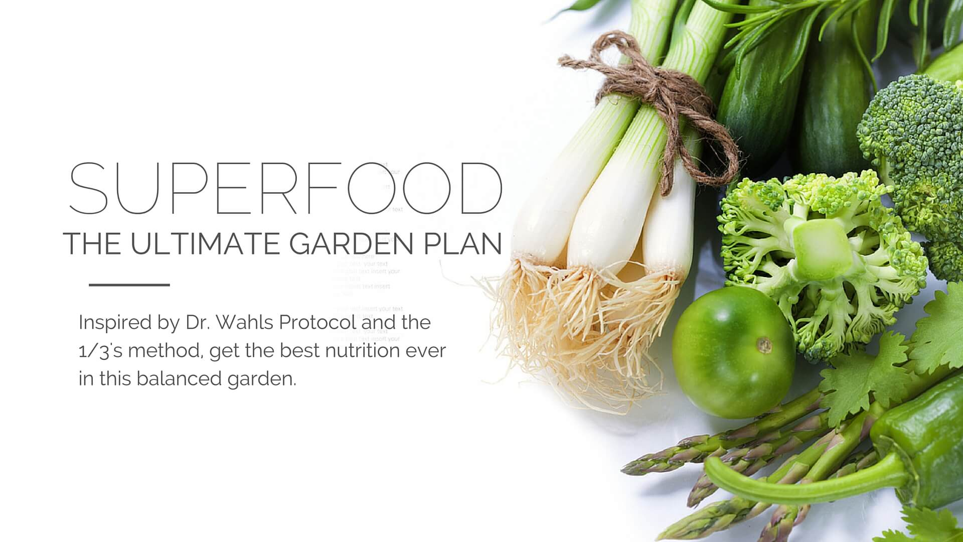Superfood garden plan