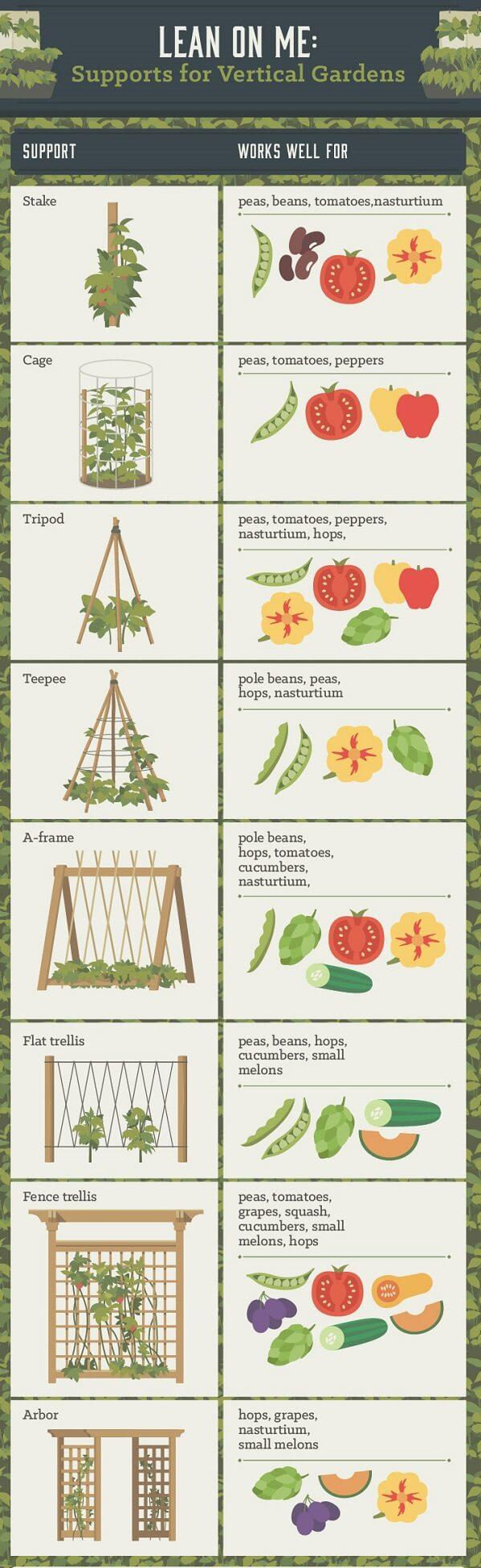 Vertical garden plant supports