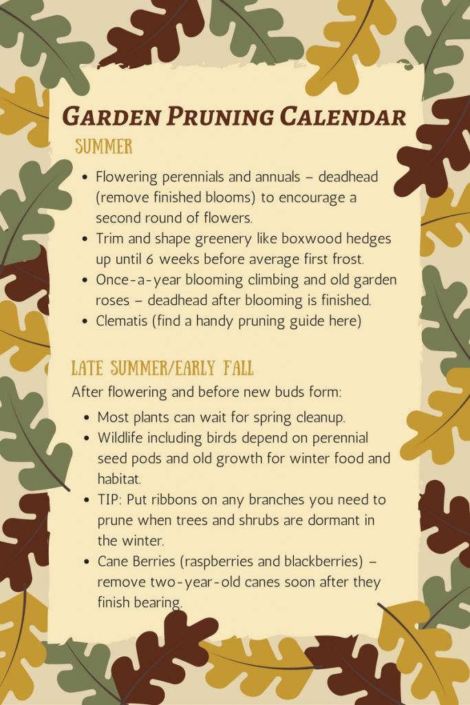 Garden pruning calendar