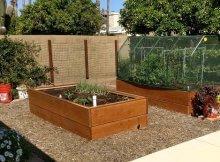 Desert gardening tips