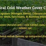 Fall cover crop tricks