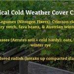 Fall cover crop tricks