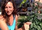 Dealing with garden overwhelm