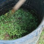 Simple DIY liquid fertilizer for the garden