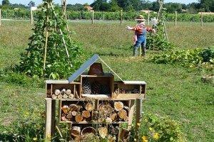 Understanding permaculture