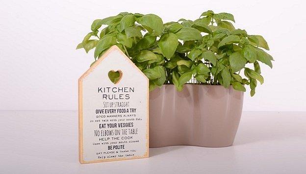 Growing herbs in an indoor herb garden