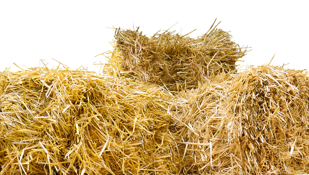 How to build a straw bale cold frame