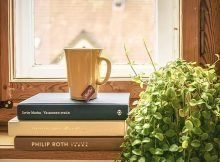 Tips for growing an indoor garden
