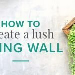 Living wall design ideas