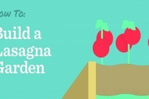 How to build a lasagna garden