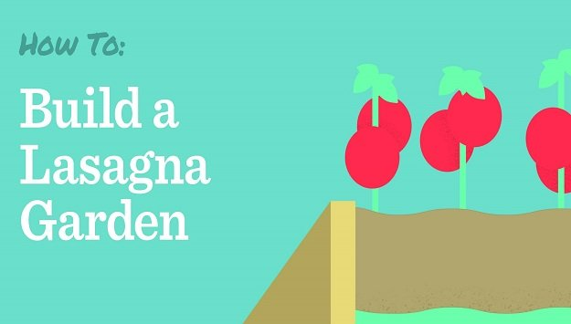 How to build a lasagna garden