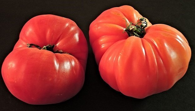 Heirloom tomatoes heirloom veggies