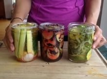 3 easy zucchini pickle recipes