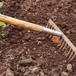 Sustainable soil cultivation tips
