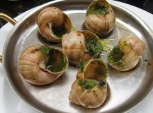 Garden snails escargot recipe