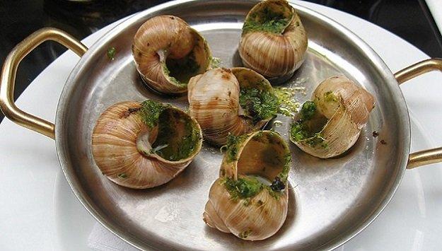 Garden snails escargot recipe