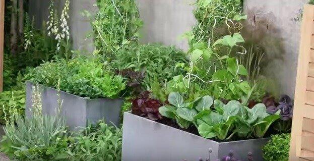 Garden microclimates