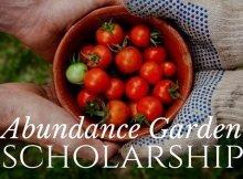 High Performance garden contest