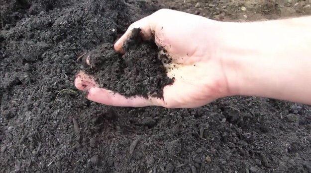 Soil improving tips