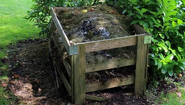 Composting essentials