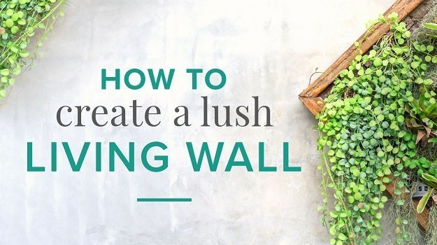 Living wall design ideas