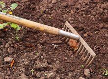 5 key components of healthy garden soil