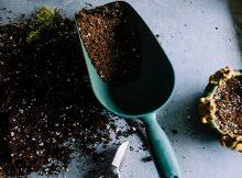 Backyard Composting 101 infographic