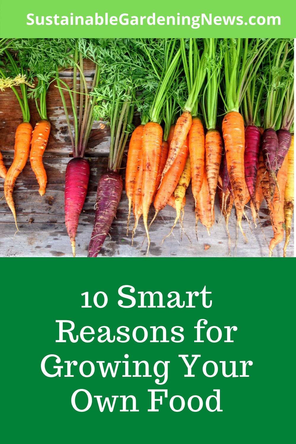 10 Smart Reasons for Growing Your Own Food