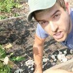 Planting garlic tutorial