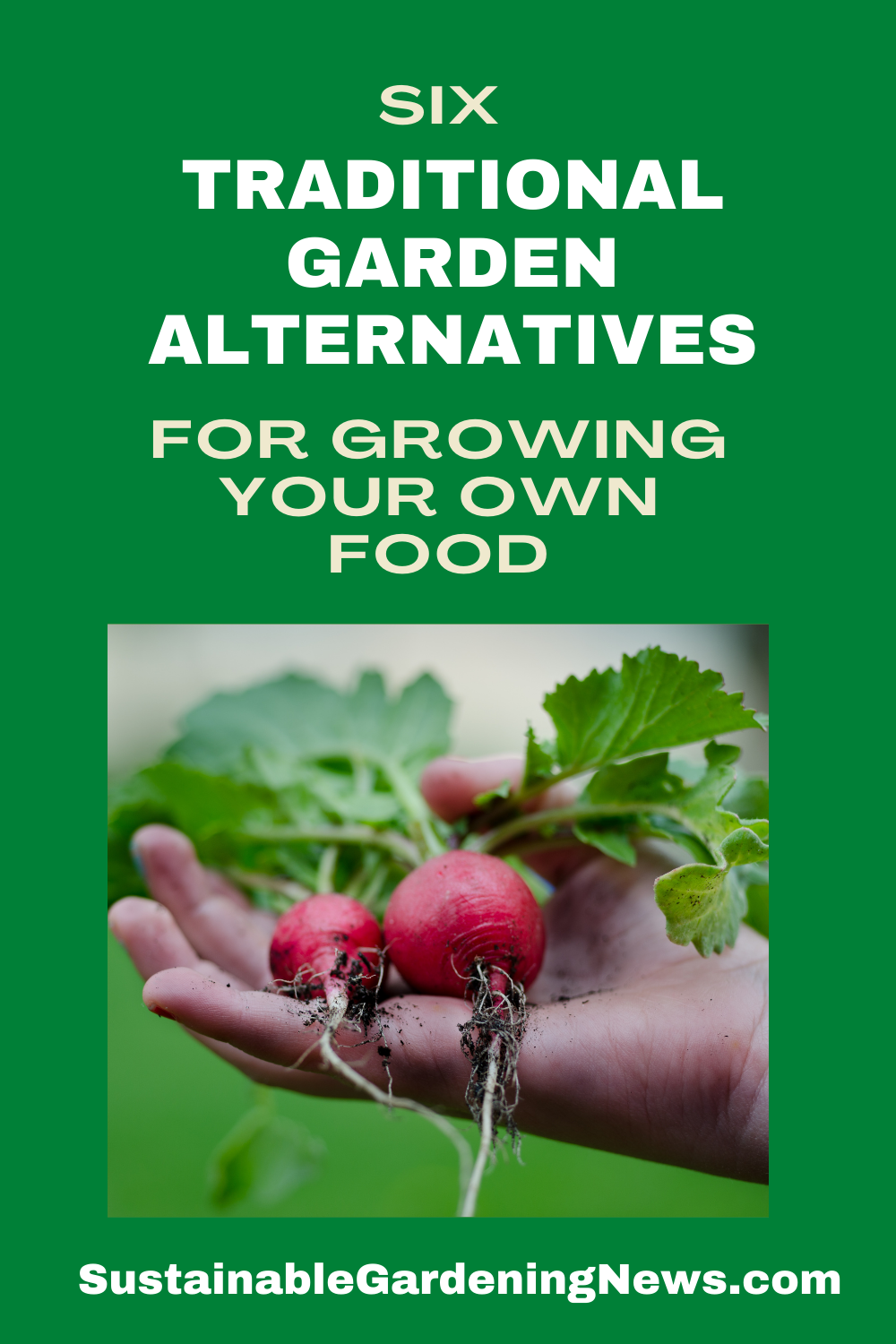 6 Traditional Garden Alternatives for Growing Your Own Food