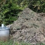 Winter composting tips for protecting beneficial insects