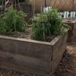 Wicking garden beds